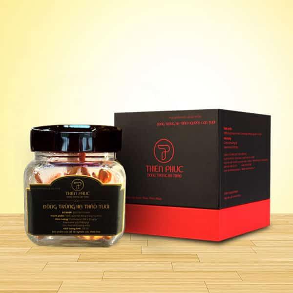 Đông trùng hạ thảo tươi: dược liệu quý bảo vệ sức khỏe