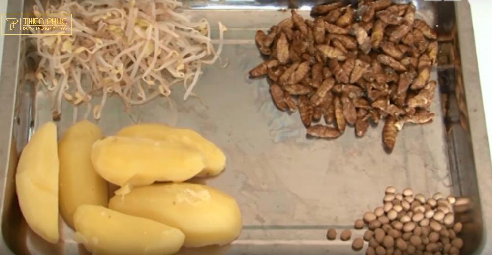 Cách trồng nấm đông trùng hạ thảo – Hướng dẫn quy trình chi tiết