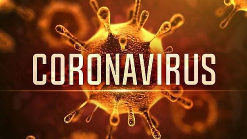 Đông trùng hạ thảo tăng cường khả năng miễn dịch với Virus Corona