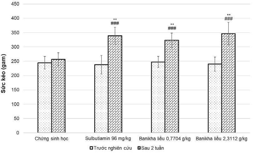 Nghiên cứu tác dụng tăng lực của Viên nang cứng Banikha trên thực nghiệm